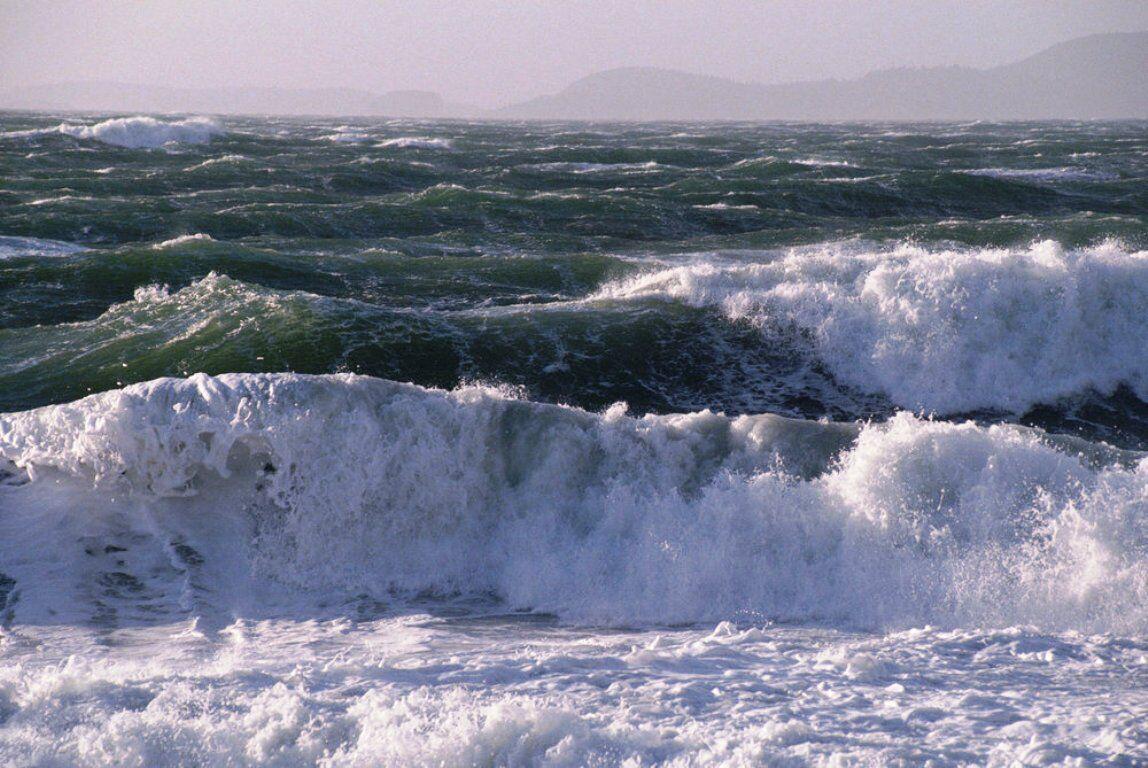 مواج بودن دریا در خلیج فارس