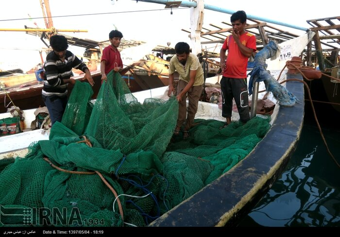 دریابست؛ ضرروتی برای احیای ذخایر آبزیان خلیج فارس