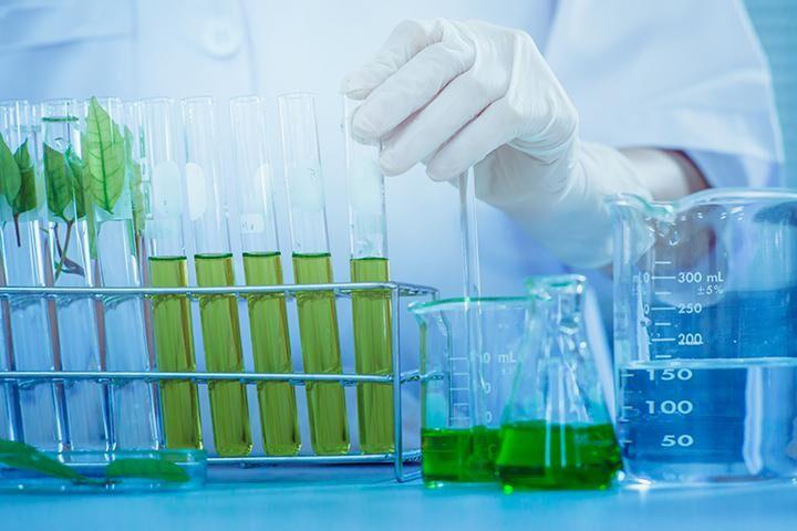 فعالیت نخستین شهرک زیست فناوری کشور در استان بوشهر آغاز شد