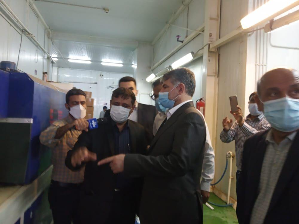 وزیر جهاد کشاورزی:  ظرفیت بوشهر در تولید میگو ۱۰ برابر میزان کنونی است