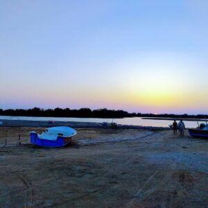 جنگلهای حرا خلیج گواتر بندر چابهار
