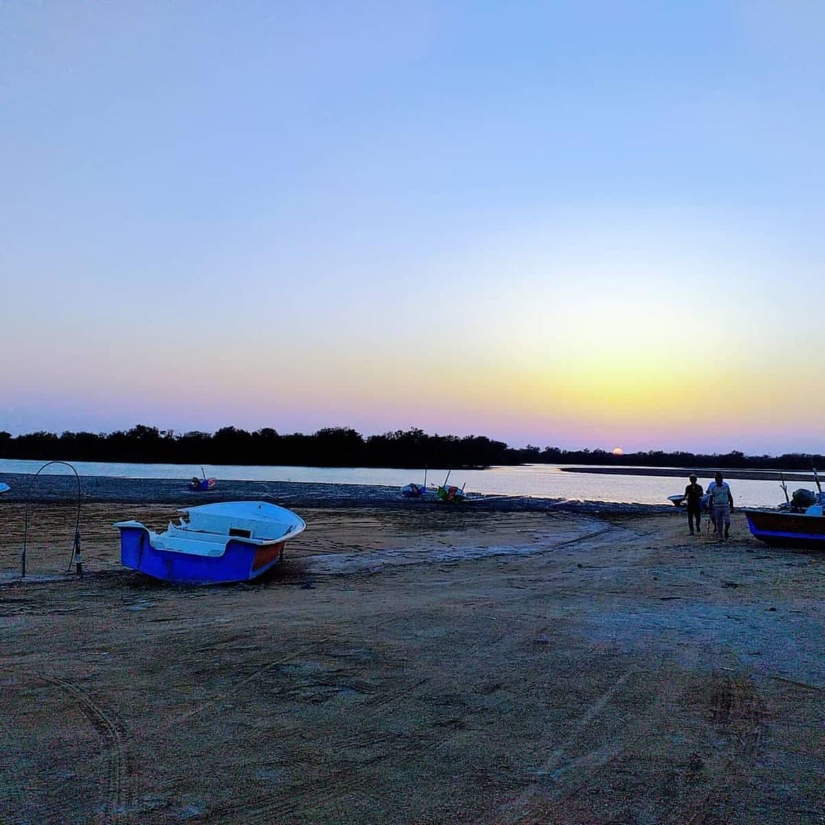 خلیج گواتر چابهار؛ جشنواره همیشگی موج سواری دلفین ها