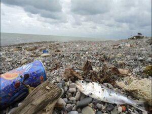 آلودگی پساب های محیط ریست دریایی دریای خزر