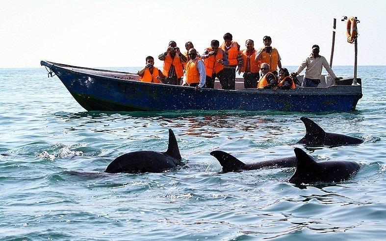 برگزاری جشنواره ملی گردشگری دریایی در بندرعباس