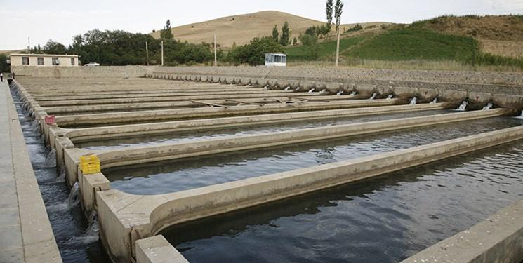 افزایش تولید آبزیان در خوزستان