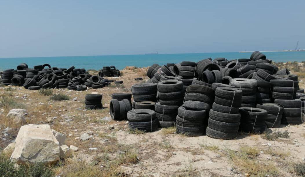 ایجاد صیدگاه مصنوعی در بوشهر ممنوع شد