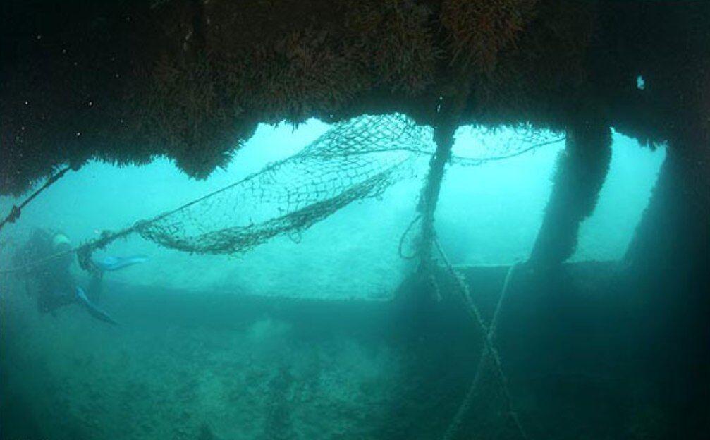 زیستگاه مصنوعی آبزیان