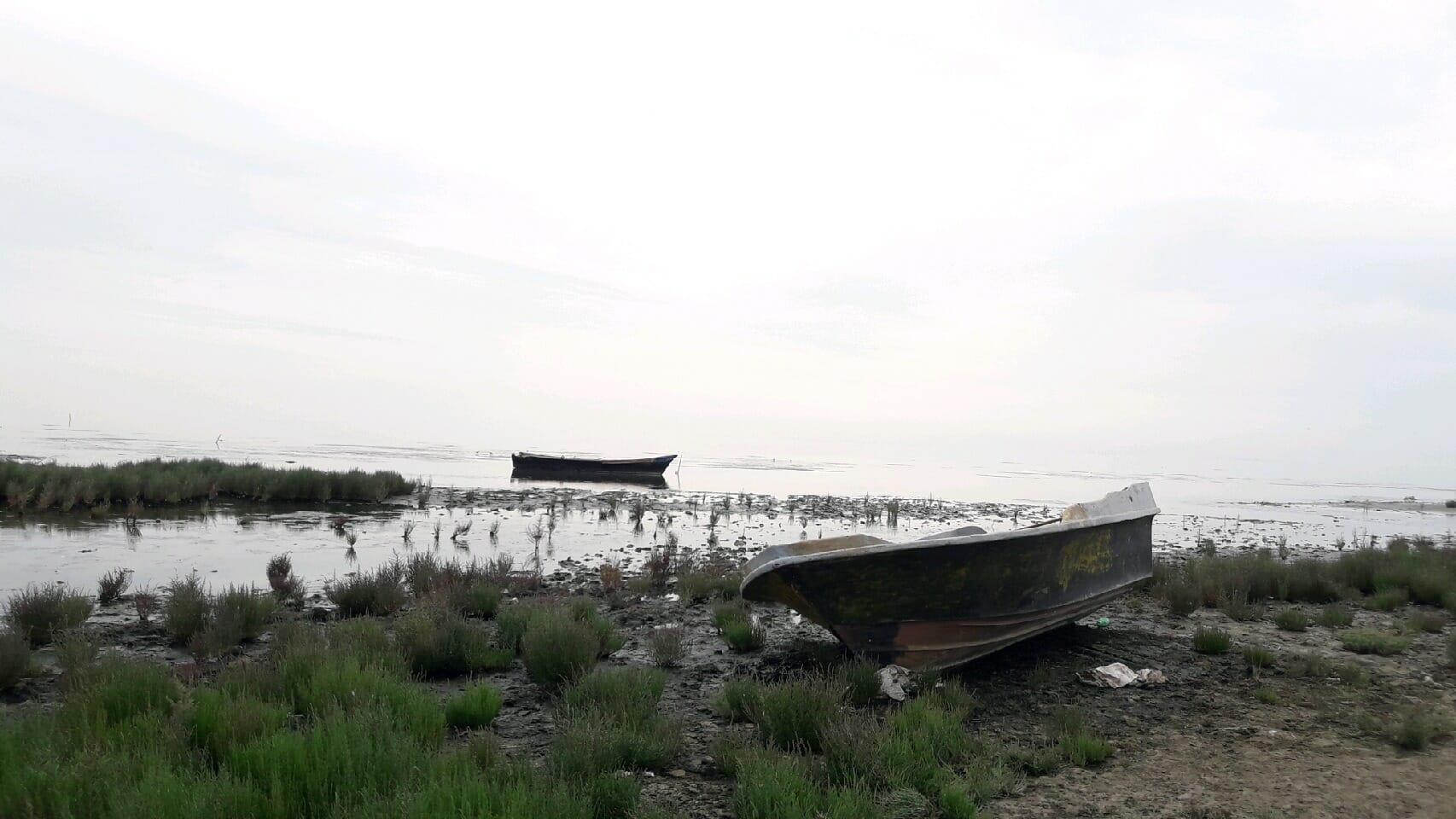 هشدار محققان درباره تبدیلشدن خلیج گرگان به تالاب