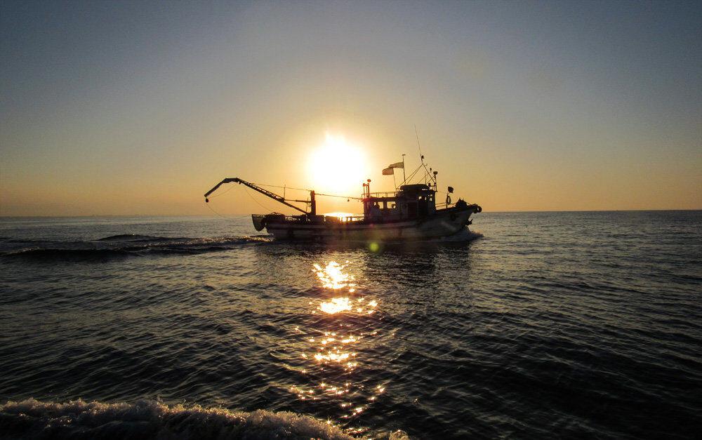 قایق صیادی و ماهیگیری کیلکا