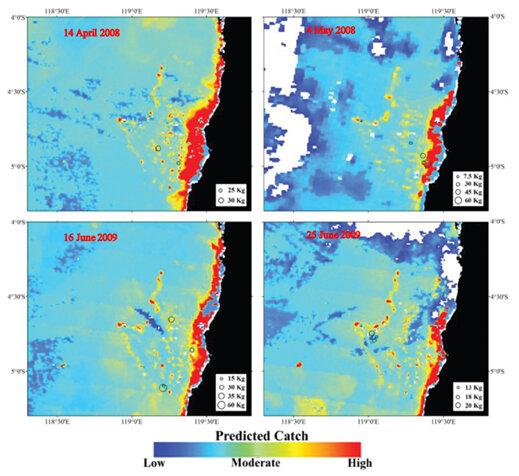 نقشه پتانسیل تجمع ماهیان در آب های مجمع الجزایر اسپرموند اندونزی