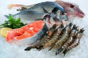 آبزیان و ماهی و میگو