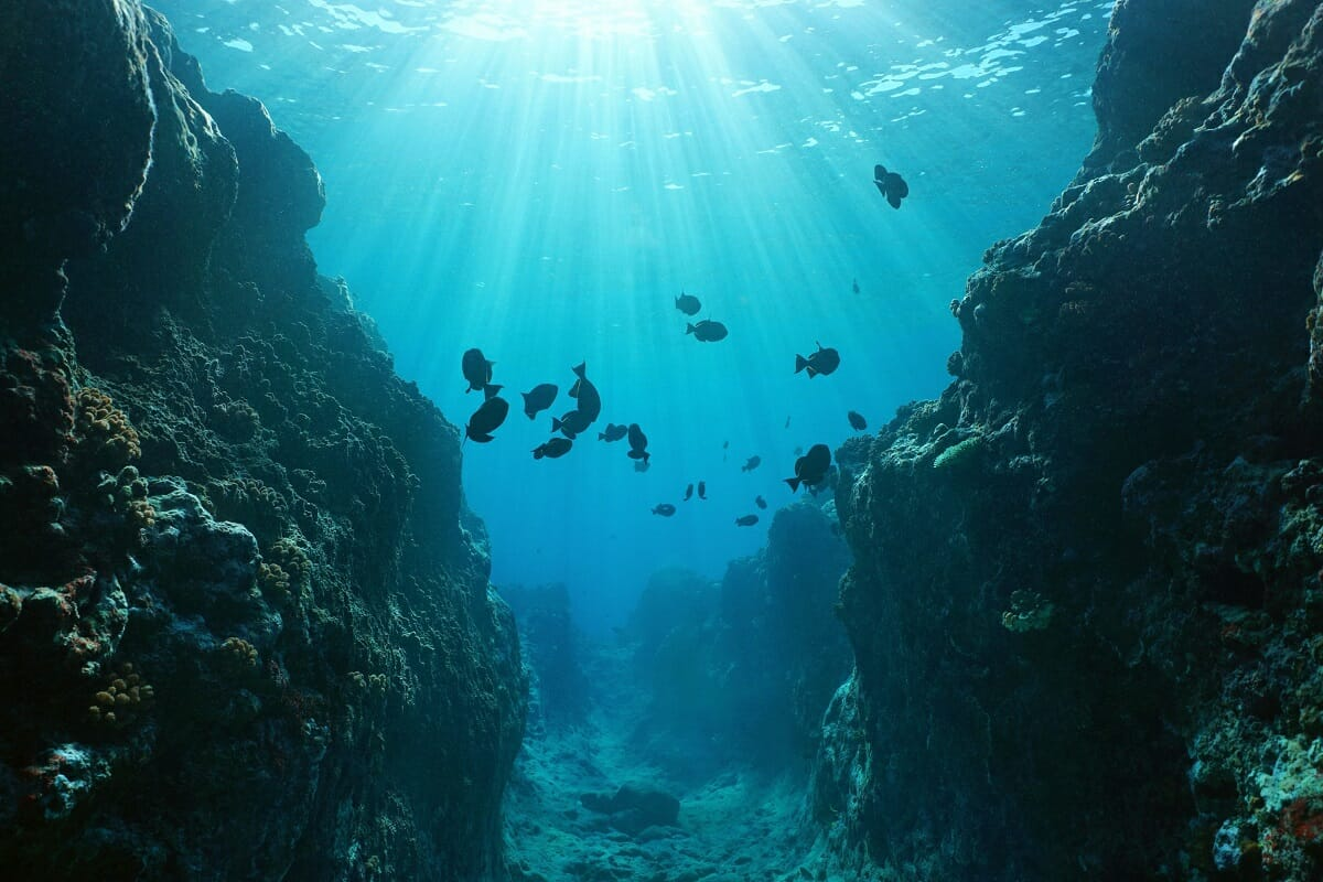 مستند کاوش در اقیانوسها/قسمت اول