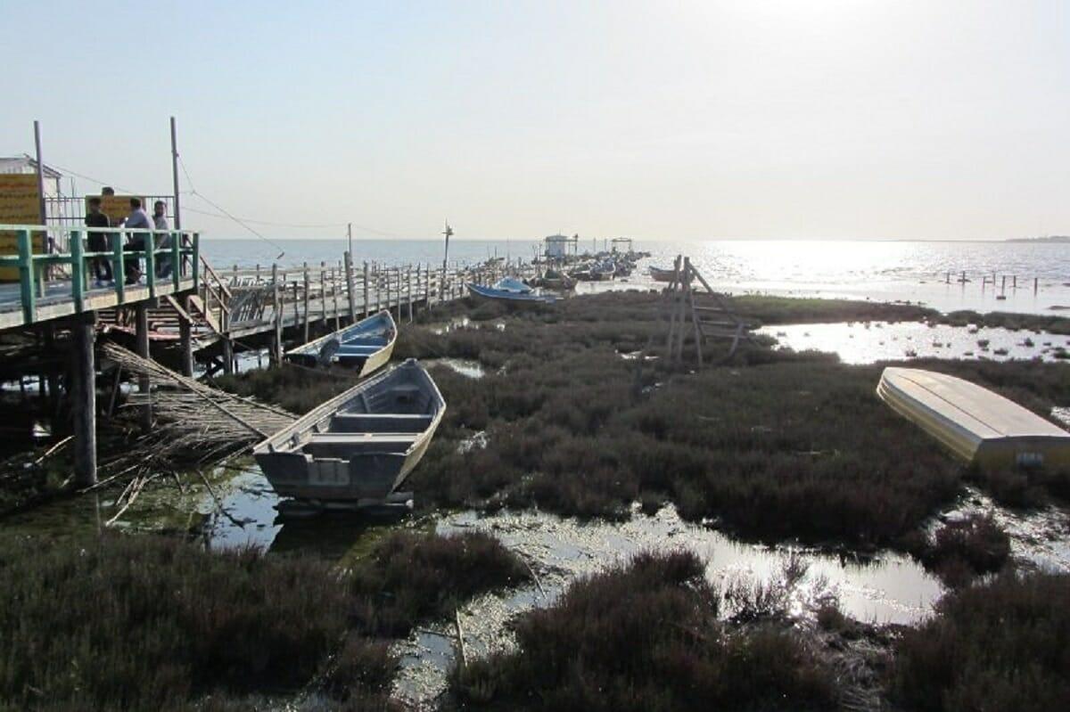 مطالعات لایروبی خلیج گرگان به کجا رسید؟