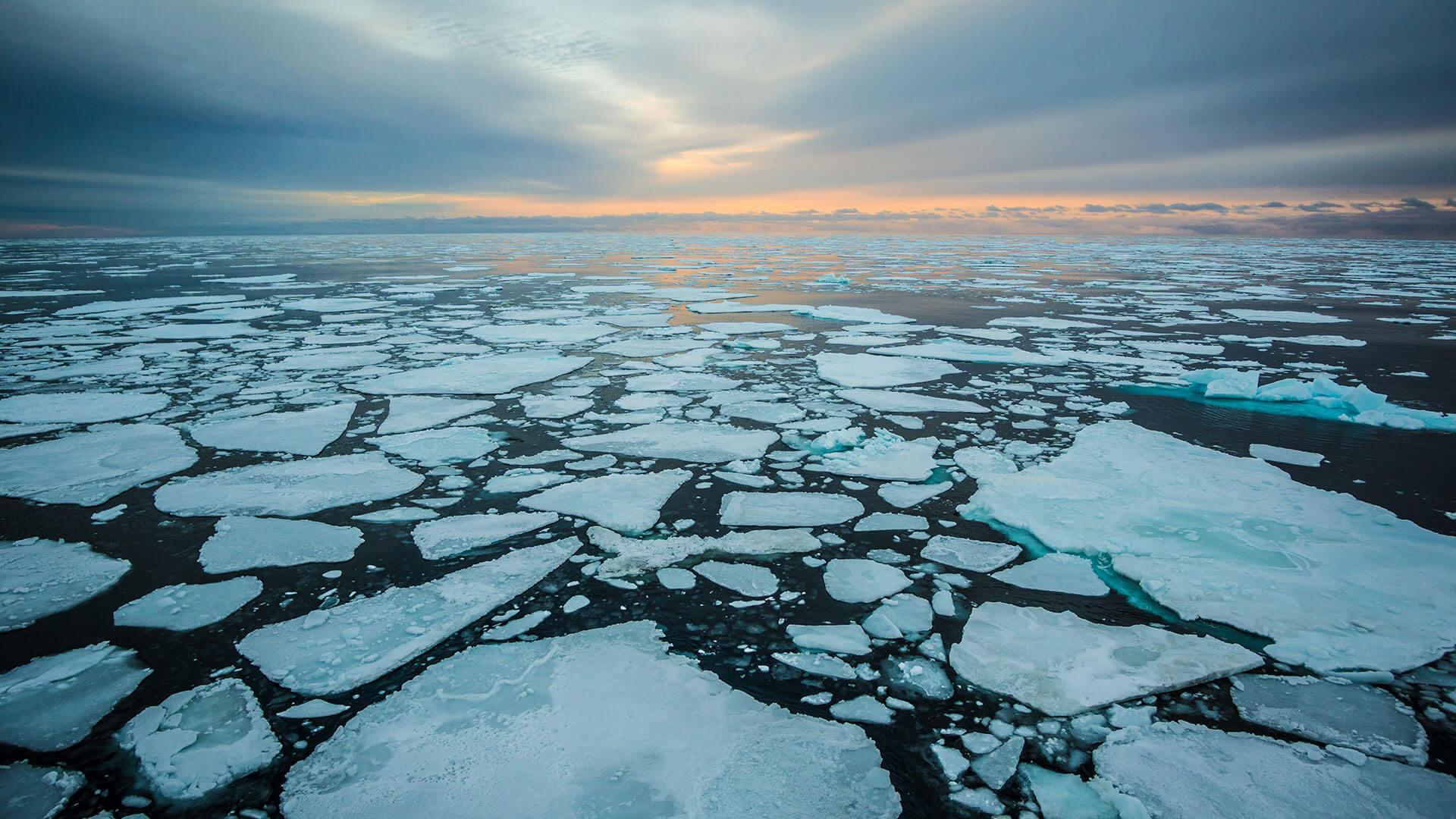 ذوب یخهای قطب شمال