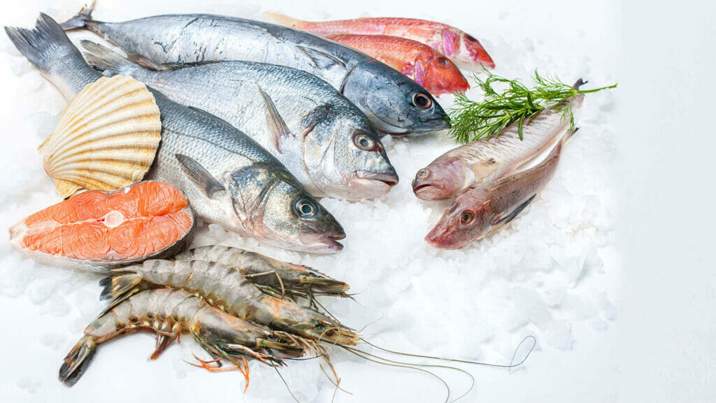 ماهی و میگو و آبزیان