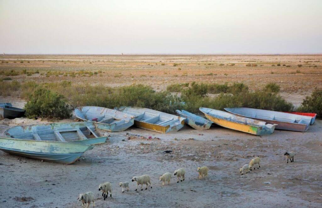 قایق های رها شده در تالاب و دریاچه هامون