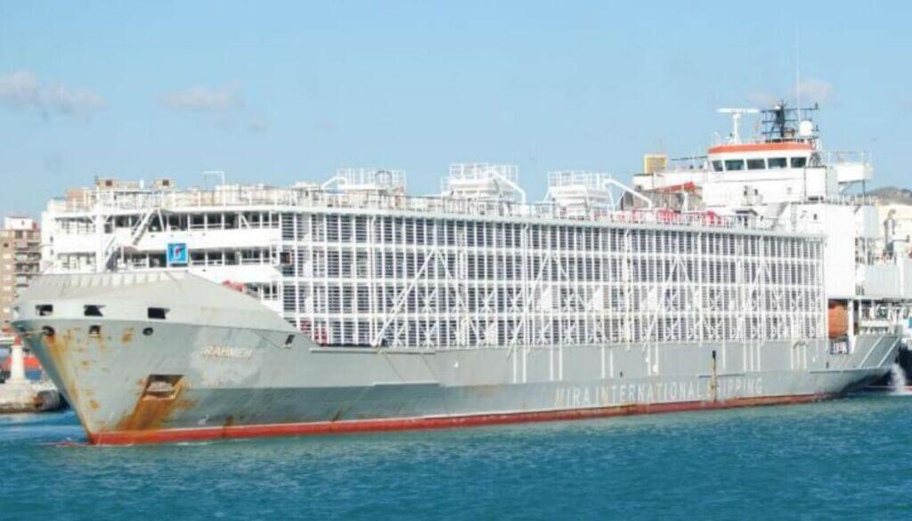 کشتی Gulf Livestock ۱