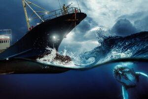 برخورد نهنگ با کشتی
