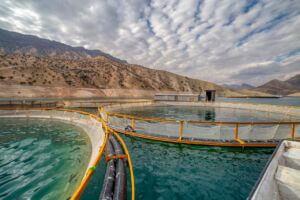 پرورش ماهی در قفس در سواحل ایران