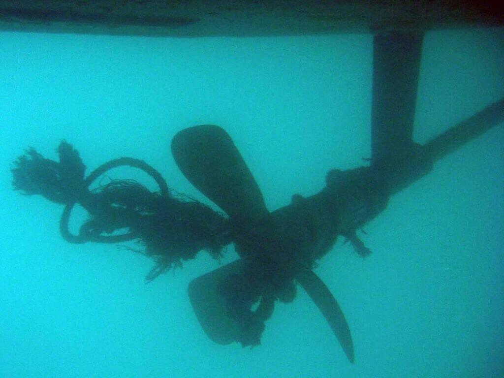 گیر کردن طناب دور پروانه شناور و کشتی